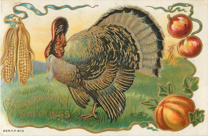 Thanksgiving Greetings Postcard -- Turkey & vegetables