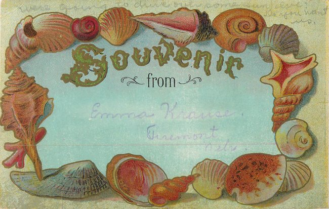 """Souvenir From"" card. Seashell border"