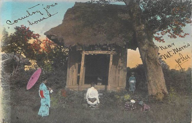 Kids Tree House Japan Postcard