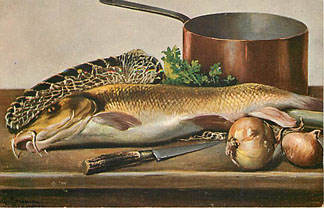 Fishing Sport Postcard Shows LARGE Fish on counter top