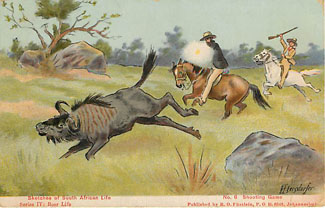 South African Hunting Life Postcard Postmarked 1911