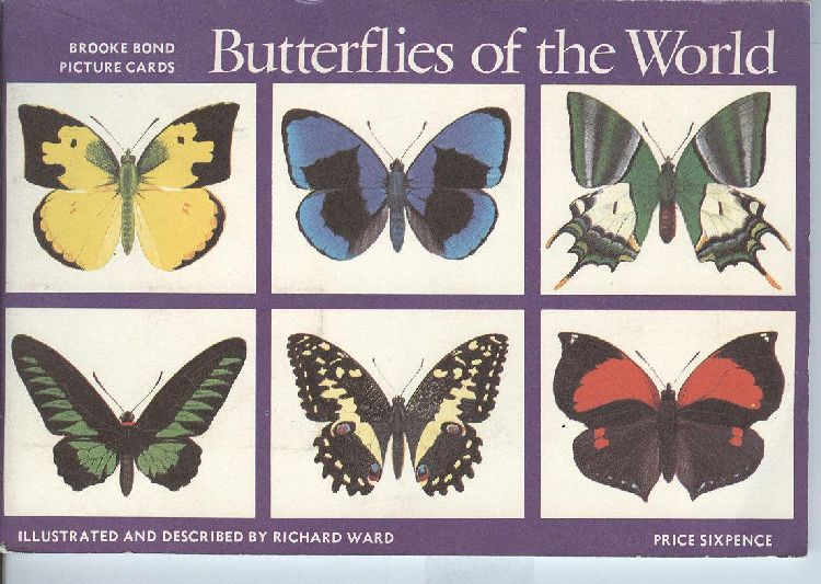 Butterflies of the World Brooke Bond Picture Cigarette Postcards