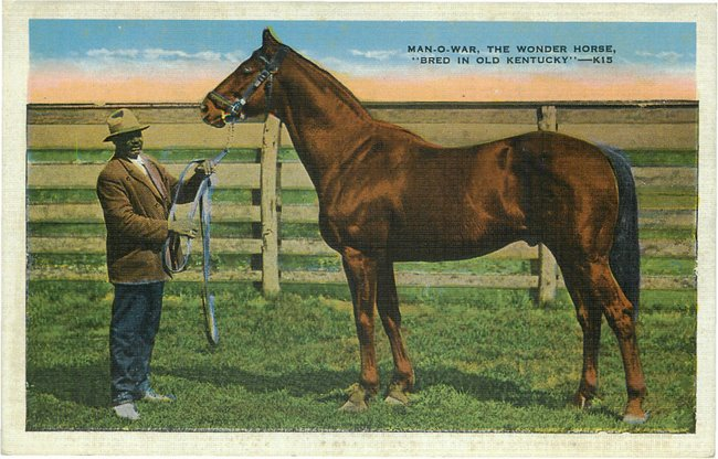"Man-O-War, The Wonder Horse, ""Bred in Old Kentucky"" No. K15"