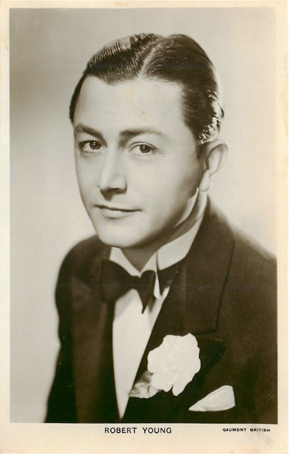 Robert Young Cinema Actor Postcard No.679c Postcard