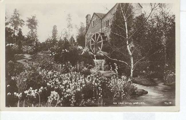 An Old Mill Garden No.16