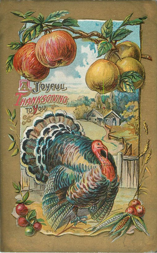 A Joyful Thanksgiving Postcard -- Turkey, Cottage, & Apples