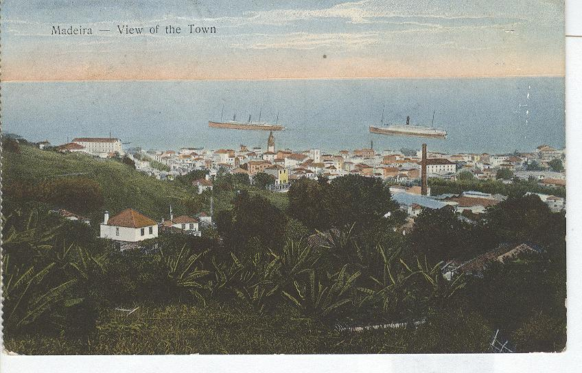Madeira- View of the Town