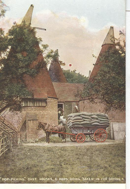 """Hop Picking"" Oast Houses, & Hops Being Taken in For Drying"